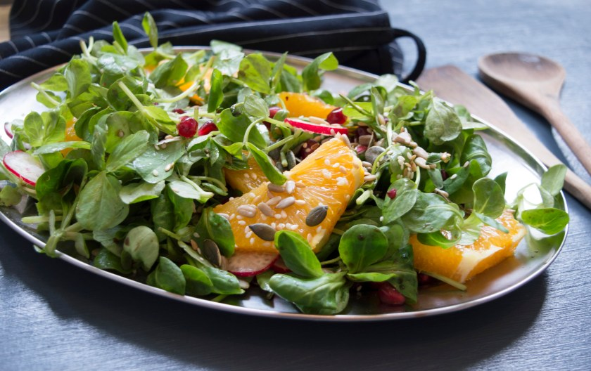 orange pomegranate radish and seed salad